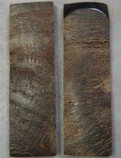 Exterior Buffalo Horn