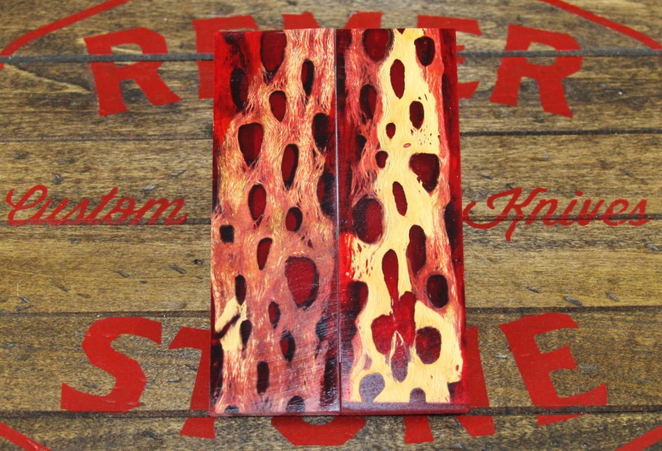 Red Cholla Cactus