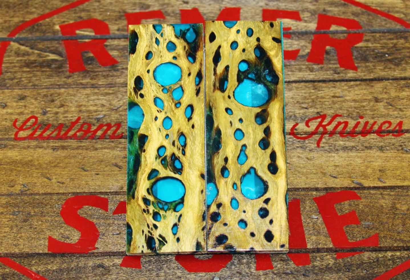 Turquoise Cholla Cactus
