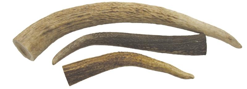 Elk Tines